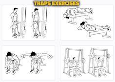 Traps Exercises Alternatives