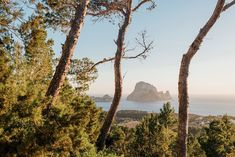 Whoever you are, wherever you come from, whenever (and however!) you get here… Es Vedra will always be waiting for you. . Click the link in our bio to start planning your summer holiday in Ibiza. . 📸 @sayanacairo Ibiza Holidays, Stuff To Do, Things To Do, Yoga Retreat, Luxury Villa, Best Hotels, Beautiful Beaches, Waiting, Real Estate