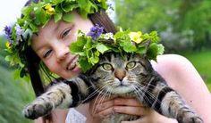 Swedish midsummer. :)