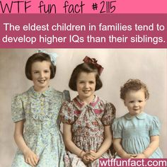 Eldest children develop higher IQs - WTF fun facts