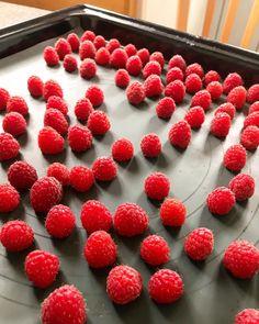 By kleintiereonline.de. .  Nachtisch als Gartenlohn. Zur Abwechslung werden hier die schönsten Himbeeren ganz und möglichst unbeschadet eingefroren. Auf einem Kuchenblech lassen sich die Früchte hervorragend platzieren; danach ab in die Gefriertruhe. Nach wenigen Stunden ist diese Verarbeitungsmethode abgeschlossen und die gefrorenen Beeren können in einem Gefäss weiter konserviert werden. Was lässt sich dann daraus machen? Cocktail-Drinks sind immer beliebt. Wir präsentieren hier das Rezept… Raspberry, Cocktail, Fruit, Food, Chest Freezer, Popular, Raspberries, Essen, Meals