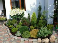 Front Yard Evergreen Landscape Garden 30