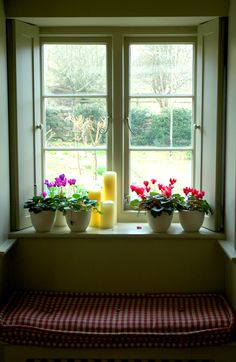 An English Country House Window