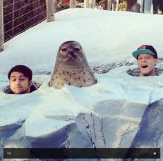 Mitch and Scott and Seal