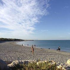 Beaches of Fremantle, Western Australia - a travellers guide to Fremantle, Western Australia Western Australia, South Beach, Travel Guide, Beaches, Surfing, Swimming, Water, Outdoor, Swim