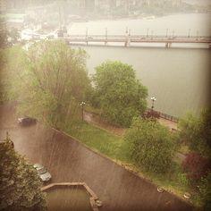 #Кальмиус и дождь