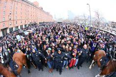 Ravens Super Bowl Parade and Ceremony