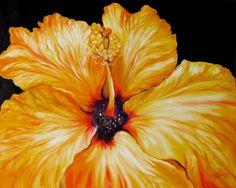 Yellow Hibiscus April 2007 by M Baldwin   Marcia Baldwin