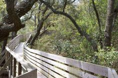 Bay Bluffs Preserve, Pensacola, FL