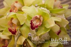 #Michigan wedding #Mike Staff Productions #wedding details #wedding photography #wedding planning #green http://www.mikestaff.com/services/photography #wedding flowers