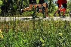 Running #stockholmmarathon #green  #stockholm #stockholm_insta #visitstockholm #djurgården #thenaturezone #visitdjurgården #photobydavidfeldt