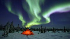 #AuroraBorealis #Nacht  #Winter #Schnee