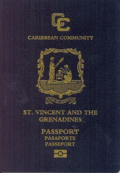 SVG_passport_cover.png (751×1085)