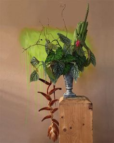 Hekong heliconias, begonias, banana leaves, anthuriums, and smilax vine