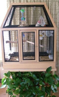 Why an Aviary Bird Cage is a Wonderful Choice : Designer Aviaries Bird Cages.