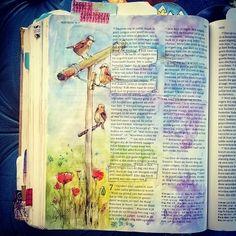 Maak je dus geen #zorgen! Kijk eens naar de #vogels. Ze zaaien niet en maaien niet. God zorgt. Kijk maar naar de lelies in het veld. God heeft hen met zorg bekleed. #Mattheüs6 is het lezen waard als je hart vol zorg, bijna in je keel zit... #godzorgt  #biblejournalingnl #biblejournalingnederland #biblejournaling #mus #waslijn #mussen #aquarel #bijbel #bible #bijschrijfbijbel #bibleart #art #believingtruth #illustratedfaith #truth