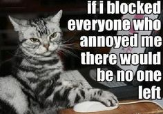 If I blocked everyone who annoyed me funny quotes quote jokes lol funny quote funny quotes funny sayings humor