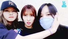 Momo, Sana & Mina | Twice K-Pop