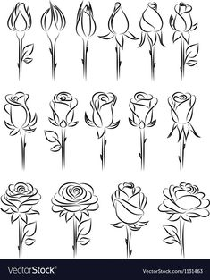 Doodle - Verzierungen Lettering Rose drawing - doodle Ornamental Fountain Article Body: The word 'Fo Art Doodle, Doodle Drawings, Easy Drawings, Tattoo Drawings, Tattoo Sketches, Tattoo Outline Drawing, Drawing Techniques, Drawing Tips, Drawing Drawing