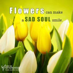 That's the magic of flowers... http://www.fnp.ae/ #fernsnpetalsUAE #flowers #flowerpower