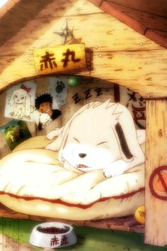 Image uploaded by Find images and videos about naruto, kiba and akamaru on We Heart It - the app to get lost in what you love. Otaku Anime, Anime Naruto, Pet Anime, Naruto Cute, Naruto Kakashi, Kawaii Anime, Manga Anime, Sasuke Sakura, Naruto Uzumaki Shippuden