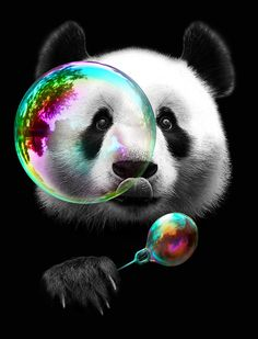 PANDA BUBLEMAKER Canvas Print by ADAMLAWLESS | Society6