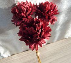 Chrysanthemum Dainty Bundle Wine Colour. Home and Garden Decor - Irish Plants Direct