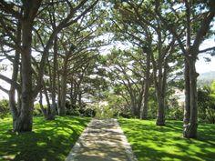 Wayfarers Chapel, Palos Verdes, California, United States - Frank Lloyd Wright, Jr.