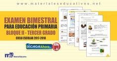 Examen+Bimestral+Para+Educación+Primaria+Tercer+Grado+–+Bloque+II+Noviembre+Diciembre Primary Education, Third Grade, Teaching Aids, November