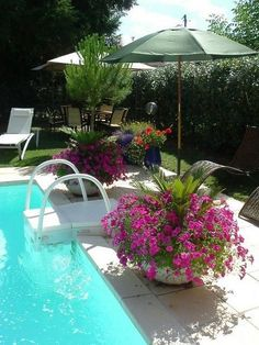 Pool landscaping. Could alter pot to use as umbrella stand.