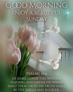 Good Morning Happy Sunday, Sunday Love, Good Morning Quotes, Psalm 91 Prayer, Psalms, Daily Scripture, Bible Verses, Scriptures, Good Morning Beautiful Flowers