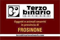 Oggetti e animali smarriti in provincia di Frosinone