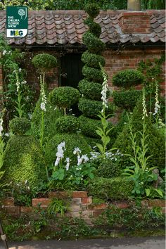 RHS Chelsea Flower Show - another view of this 'Artisan' Garden -The Topiarist Garden at West Green House Zenith44 designed by Marylyn Abbott.  Think it's 100% better than all the big show gardens put together this year at Chelsea 2014.