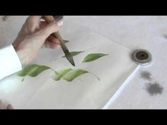 Chinese Brush Painting Lesson 29 Phalaenopsis Orchid (Trailer) - YouTube