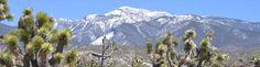 Town of Pahrump Pahrump Nevada, Mount Everest, Spaces, Mountains, World, Travel, Viajes, Destinations, The World
