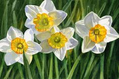 Four Small Daffodils Painting by Sharon Freeman - Four Small Daffodils Fine Art Prints and Posters for Sale