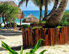 Il luogo ideale per trascorrere la Domenica. Ed il Lunedì Martedì Mercoledì...  #domenica #buonadomenica #domenicadacoma #vitadaspiaggia #luoghimeravigliosi #paradiso #spiagge #spiaggeincantevoli #spiaggemeravigliose #viaggiare #vacanze #esperienze #esperienzeindimenticabili #esperienzediviaggio #conoscereilmondo #caraibi #caraibico #messico #spiaggedelmessico #viaggiatoridelmondo #viaggi #viaggio #fotoricordo #fotodiviaggio