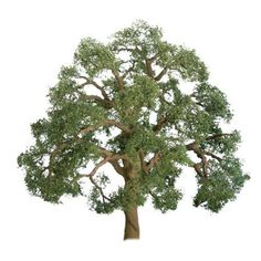 "JTT Scenery Products HO scale # 94350. 2 Pack of 3"" 'live' Oak trees. Scales to 40' for N, 22' if used with HO. In original box."