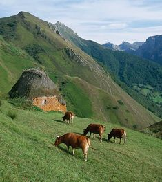 Parque Natural de Redes, Asturias, Spain Wonderful Places, Beautiful Places, Asturias Spain, Paraiso Natural, Spain And Portugal, Places Of Interest, Spain Travel, Beautiful Landscapes, Trip Planning