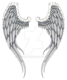 angel wings by Djumah on DeviantArt