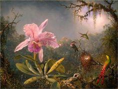 Cattleya+Orchid+and+Three+Hummingbirds+-++Martin+Johnson+Heade+–+1871.jpg (500×380)