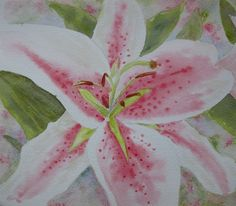 Watercolour Flower Lily £15.00