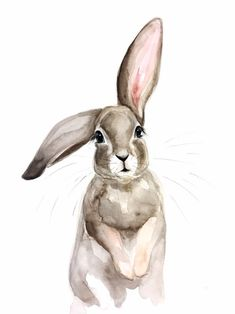 original watercolor print on card stock rabbit illustration pictures Flopsy Bunny Watercolor print Bunny Painting, Bunny Drawing, Bunny Art, Easy Watercolor, Watercolor Animals, Watercolor Print, Watercolor Paintings, Painting Illustrations, Watercolor Flowers