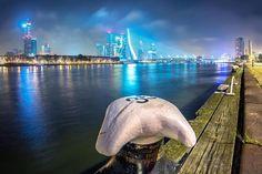 Rotterdam is uitgeroepen tot beste stad van Europa, dat snappen wij wel   News   Upcoming