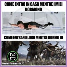 Funny Images, Funny Photos, Funny Cute, Hilarious, Italian Memes, Funny Test, Verona, Funny Messages, Funny Moments