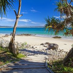 43 best noosa images australia travel sunshine coast aussies rh pinterest com