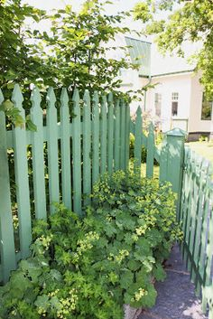 10 Proud Clever Tips: Living Fence Animals modern fence interior.Brick Fence With Iron chain link fence repair.Fence And Gates Australia.