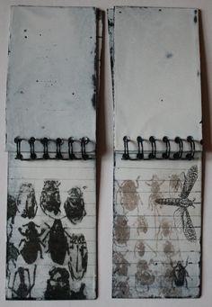 Sue Brown Printmaker: FIELD NOTES (metal)