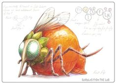 Rob Foote #art #illustration #coloredpencil #colour #pencil #prismacolor #fruit #animal #hybrid #fly #insect