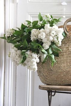 White lilacs and straw market basket